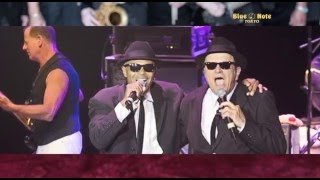 "THE ""ORIGINAL"" BLUES BROTHERS BAND : BLUE NOTE TOKYO 2016 trailer"