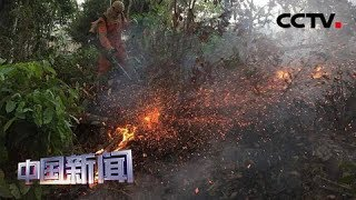 [中国新闻] 亚马孙森林大火持续燃烧 巴西官员:火灾多发系天气原因 | CCTV中文国际