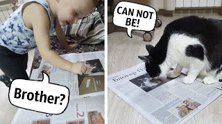 Our faces are in the newspaper! The reaction of the cat and his brother