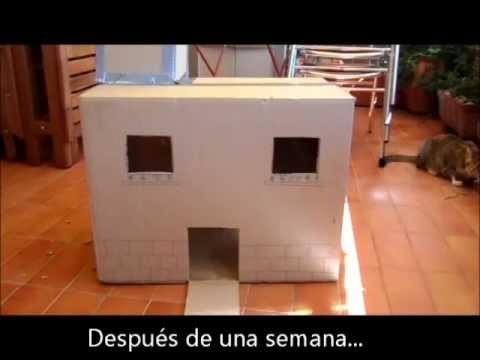 Erase una vez una caja de cart n en una casa con gatos for Cosas para amueblar una casa