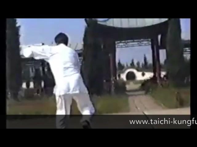 Chen Boxiang  - Tai Chi style Chen Xiaojia Erlu 1994 [陈氏太极拳小架 Taijiquan style Chen Xiaojia]