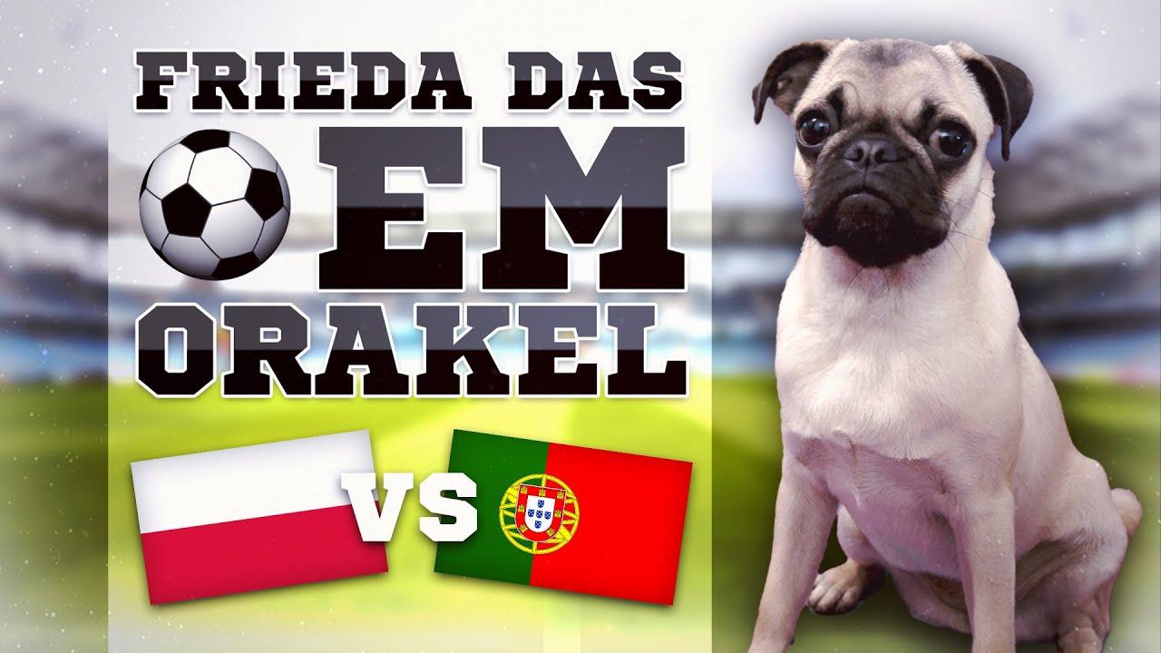 Polen Gegen Portugal Tipp