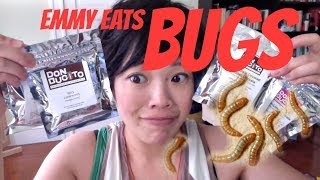 Emmy Eats Bugs | mealworms & crickets