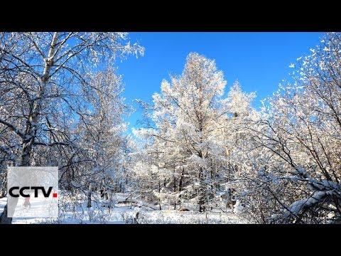 A white wonderland in Inner Mongolia