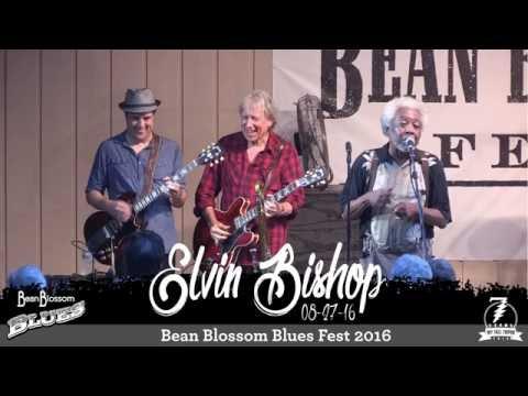 Elvin Bishop ~ Travelin' Shoes ~ Bean Blossom Blues Fest 2016