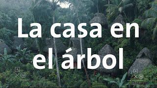 Me hospedé en una casa en un árbol 4k | República Dominicana #10