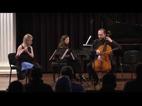 J. Haydn: Piano trio in D major Hob. XV:16