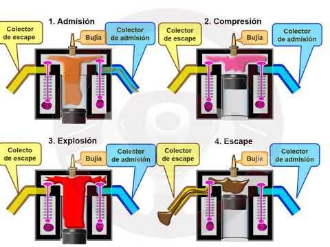 ASÍ FUNCIONA EL AUTOMÓVIL (I) - 1.6 Motor de gasolina (3/11)