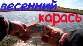 Весенний КРУПНЫЙ КАРАСЬ в апреле Рыбалка 2020