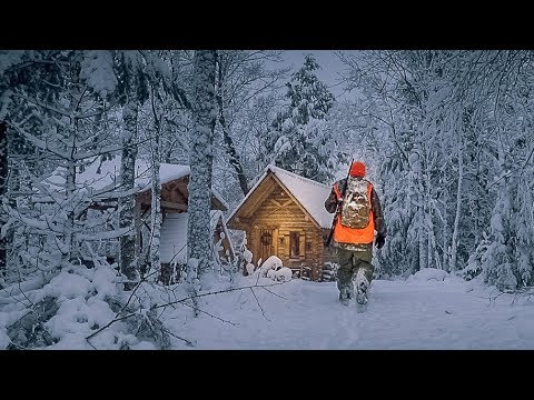 What a Difference a Day Makes! | Off Grid Log Cabin Sauna Ep 9