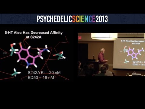 Neuroscience of Psychedelics Workshop - Part 2/4