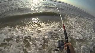 Surf Fishing for Pompano in Florida !!