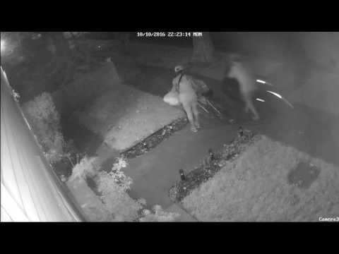 Crime in Woodland, California