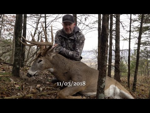 Proven Whitetail Rut Hunting Setup AND Success