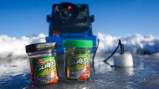 Ice Fishing with GULP ALIVE! (IT ACTUALLY WORKS)