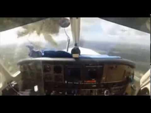 Vogel kracht durch Cockpit-Fenster - Bird Crashes Through Plane's Windshield