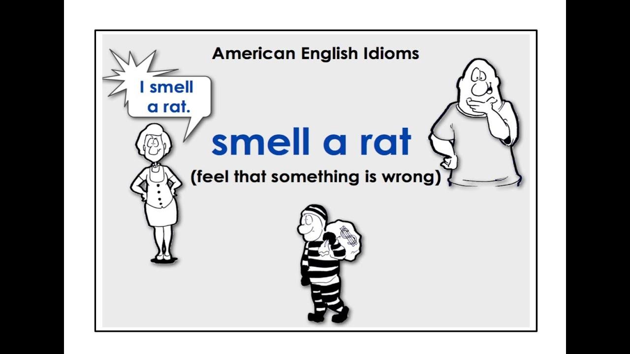 English easy video