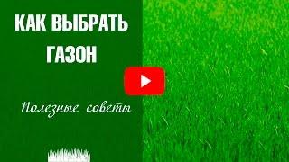 видео Все о газоне из красной овсяницы: посадка, уход, фото результата