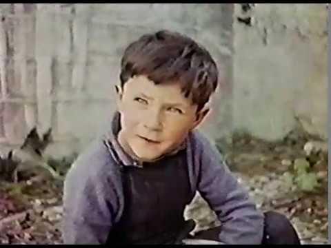 Shamus (Old Irish Film)