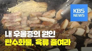 탄수화물·육류 우울증 위험 높인다! / KBS뉴스(News)