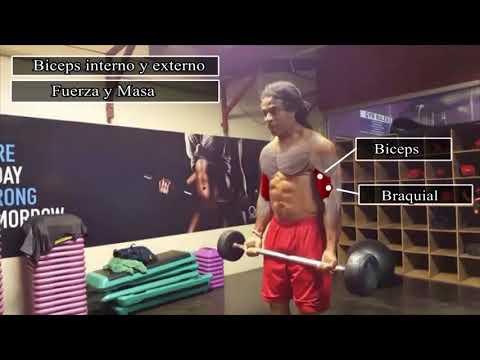 anatomia-del-ejercicio/rutina-de-brazos¿-no-te-crecen-los-brazos?-aqui-esta-la-solución.