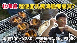 北海道海鮮很貴嗎?馬糞海膽隨你撈,100克只要日幣280???還有超大顆的扇貝及北寄貝,北海道女婿就地烤來吃。