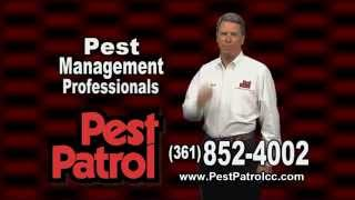 Pest Patrol Protection Plan