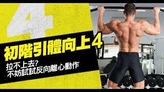引體向上訓練健身教學04:背部訓練-離心引體向上