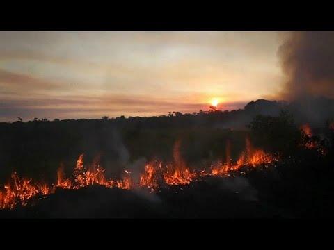 Euronews:Brazil's Bolsonaro blames Amazon fires on NGOs making 'problems'