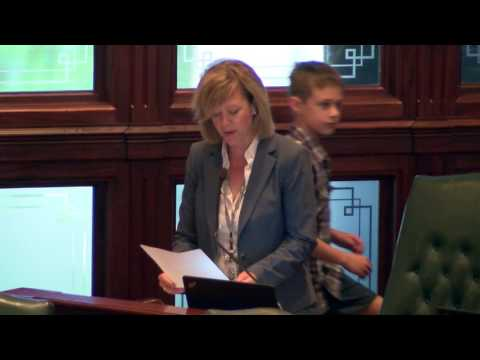 Rep. Ives Honors 100th Anniversary of the First Division