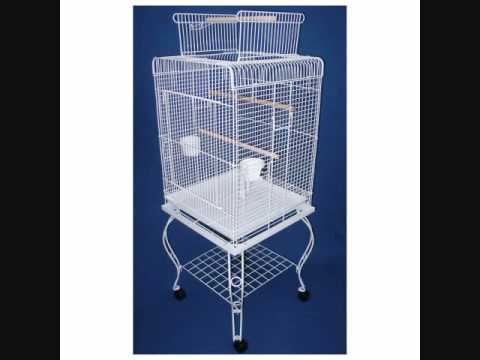 cage oiseaux conseils youtube. Black Bedroom Furniture Sets. Home Design Ideas