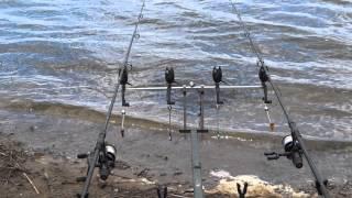ловля амура на плаваючий бойл ccmoor