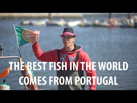 The Best Fish In The World Comes From Portugal