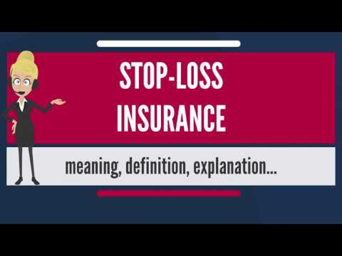 What is STOP-LOSS INSURANCE? What does STOP-LOSS INSURANCE mean? STOP-LOSS INSURANCE meaning