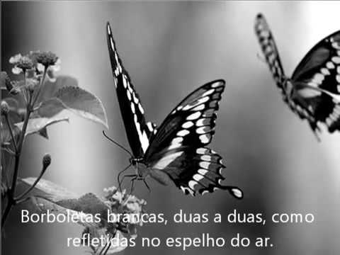 A arte de ser feliz, poema de Cecília Meireles. - YouTube