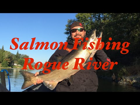King salmon fishing on the rogue river with guide troy for Whitakers fishing report