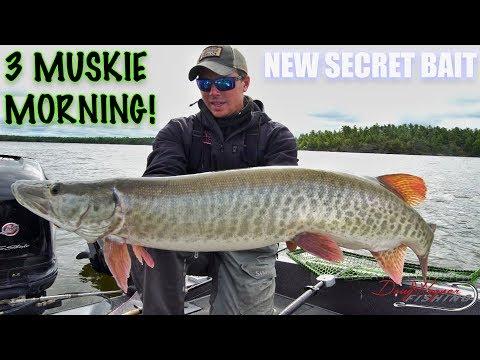 3 MUSKIE MORNING || SECRET BAIT || Making Baits Better! Canadian Vlogs Day 15