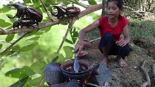 Catching Insect on Tree To Cook For Lunch - Cooking Insect Recipe For Eating Delicious #71