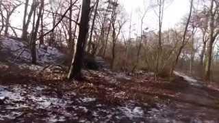 vemmetofte skov
