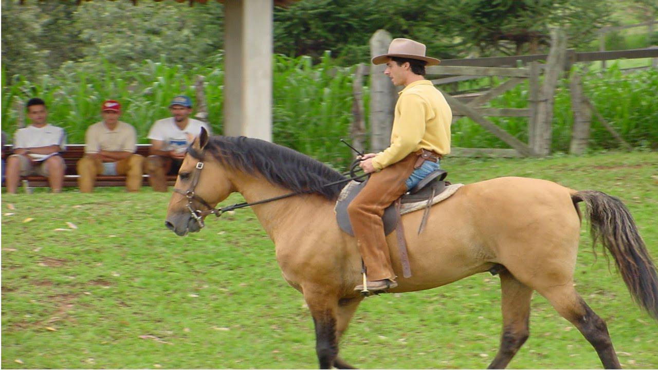 Curso Aprenda a Montar e Lidar com Cavalos - Cursos CPT - YouTube 5520dccea00
