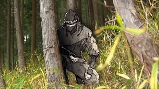 A nindzsák legendája - Legend of the Ninja   japán dokumentumfilm