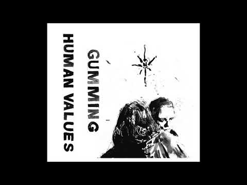 Gumming - Human Values CS (2018)