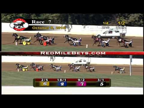 Red Mile Racetrack Race 7 10-8-2016
