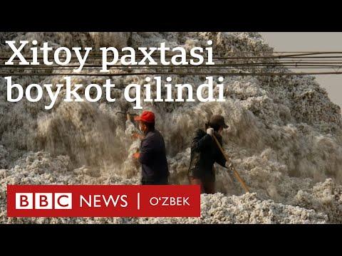 Америка уйғурлар сабаб Хитой пахта ва помидорига тақиқ қўйди - Янгиликлар, Дунё - BBC News O'zbek