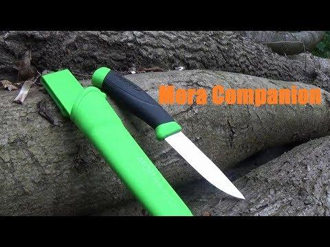 Mora Companion overview