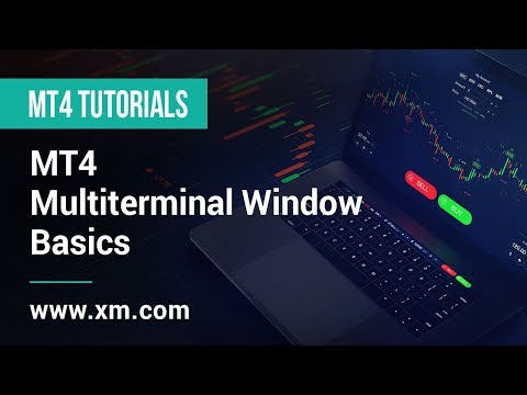 xm.com---mt4-tutorials---mt4-multiterminal-window---basics