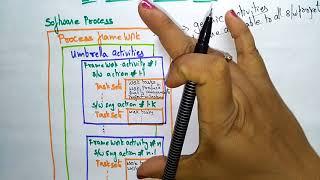 process model   software engineering  