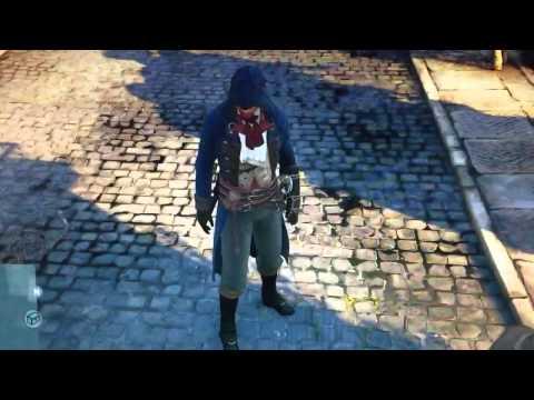 Assassins Creed: Unity (PC) flicker.