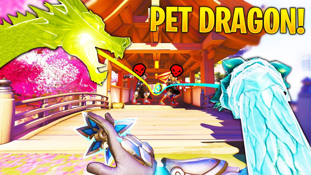 *NEW* OP Pet DRAGON Glitch..! - Overwatch Moments Montage