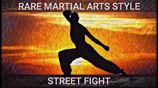 Rare Martial Arts Style in Street Fight